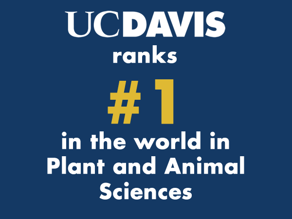 UC Davis ranks #1 in the world in plant and animal sciences