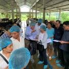 Extension agents receiving hands-on training at a farm near Ho Chi Minh City, Vietnam